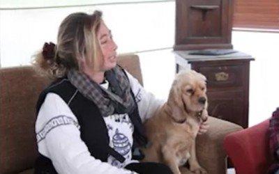 Başarı Hikayeleri Best Dog Clup