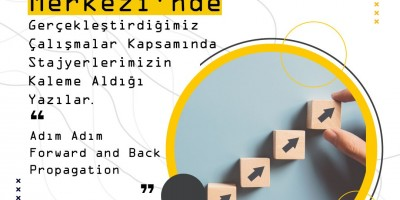 Adım Adım Forward and Back Propagation